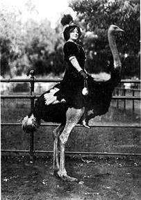 Anna Held visiting a Los Angeles ostrich farm, 1911